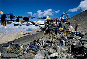 Trek_Himalaya